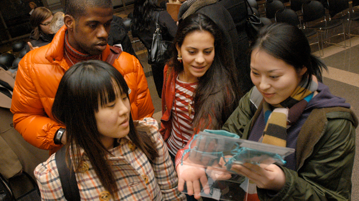 students examining handbag